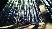Mountain Bike Gnarly Freeride