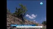 60 000 лева на ден е струвало издирването в Стара планина - Новините на Нова