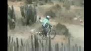 2 downhill tongoy 2009