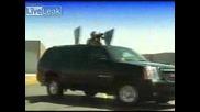 Presidential Suv - Convoy Sentinel