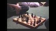 Хамстер Шахматист