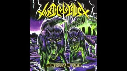 Toxic Holocaust - War Is Hell