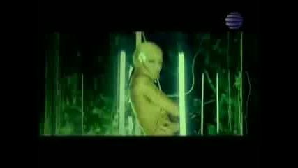 ! ! Камелия - Черна кръв - Топ песен на 2009 ! ! ! !