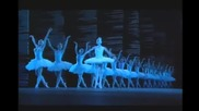 Swan lake Paris Opera 16