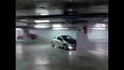 Tigra Sachove V Parkinga Na Mall Varna