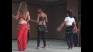 Mvi_6618 Танцъорките от с.брястовец, общ;бургас