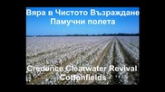 *превод* Creedence Clearwater Revival - Cotton Fields