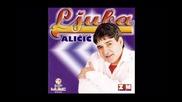 Fenomenalna pjesma!!! Ljuba Alicic - Gromovi pucajte (hq) (bg sub)