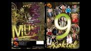 KOKTEL 9 - Vesna Zmijanac - Zrno soli - BN Music 2013