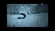 Емилия - Ти Си Луд (официално Видео)