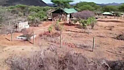 Новородени слончета в Кения се хранят с козе мляко