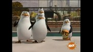 The Penguins of Madagascar - Paternal egg - stinct