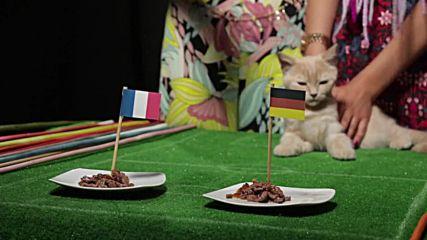 Жо Тем с неочаквана прогноза за големия сблъсък между Франция и Германия
