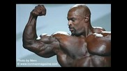 Ronnie Coleman, Gustavo Badell, Jay Cutler