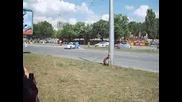 Рали Варна 10/06/2007