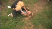 Секси бой между две блондинки