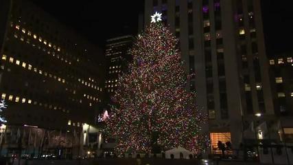 Видео - (2014-12-13 17:52:51)