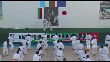 9-ти Национален Семинар по Карате Киокушин 2012 - Шихан Сейджи Изобе - 8ми дан