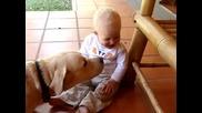 bebe y perro labrador