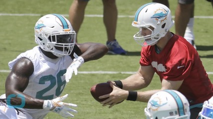 Miami Dolphins Inadvertently Post a Crotch Shot to Instagram