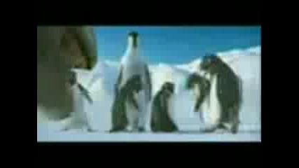 Пингвините Рапъри