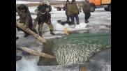 Ето как се лови риба в Русия