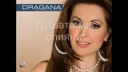 Dragana Mircovic - Dusu si mi opio (prevod)