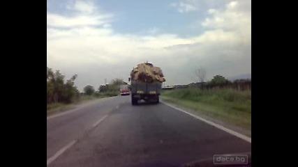 Ужас! Български шофьор