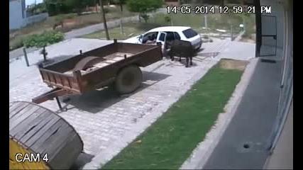 Как се Краде Крава по Руски