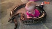 Бебе си играе с питон