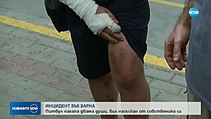 Питбул нахапа жестоко млад мъж във Варна