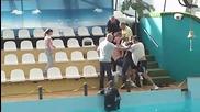 смешен бой в руски делфинариум