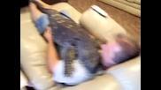 Гигантски гущер се опитва да спи въpху стопанина си !