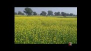 Индийско Музикално Видео