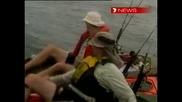 Акули в атака