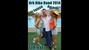 Ork Riko Bend 2014 Mladen New Tarikati Hits Dj Feissa