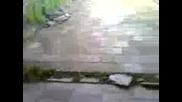 Lqlqvideo - 0001.3gp