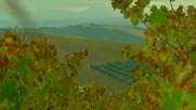 """Андалусия - център на лозарството (""""Без багаж"""" еп.105 трейлър)."""