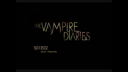 Vampire Diaries - Mud (peaches)