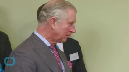 Second Batch of Prince Charles 'black Spider Memos' to Be Published: Live