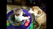 Малко дете и питбул