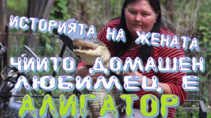Историята на жената чиито домашен любимец е алигатор!