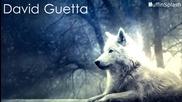 She Wolf - David Guetta + Превод