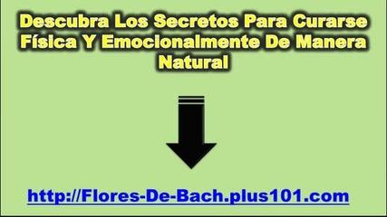 Flores De Bach Para Dormir