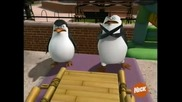 The Penguins of Madagascar - Eclipsed