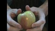 Как да разполовим ябълка със голи ръце