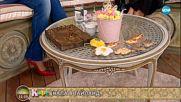 """""""На кафе"""" с Нелина за премеждията ѝ в Тайланд (27.03.2018)"""