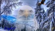 Орелът - Господарят на висините! ... ( Pan Flute Music)
