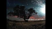 Kosheen - Overkill (превод)