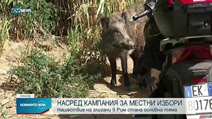 Новините на NOVA NEWS (24.09.2021 – 10:00)
